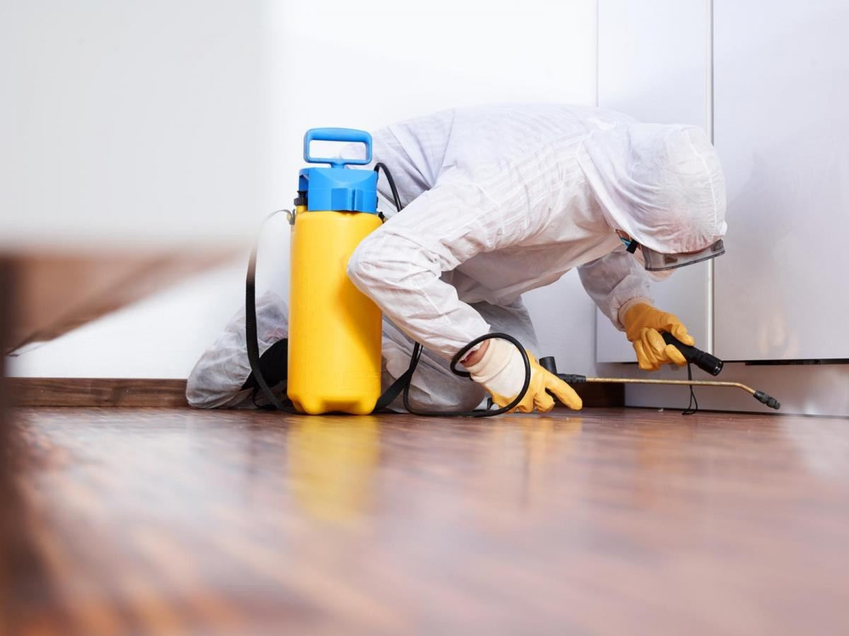 disinfection-cleaning-in-New-York